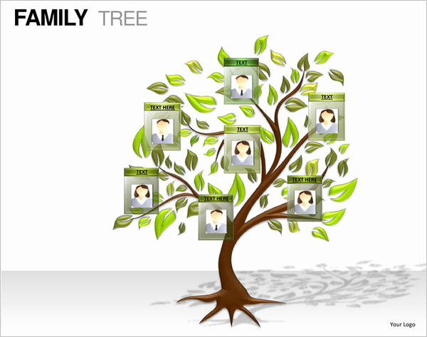 Powerpoint Family Tree Template Best Of 9 Powerpoint Family Tree Template Ppt