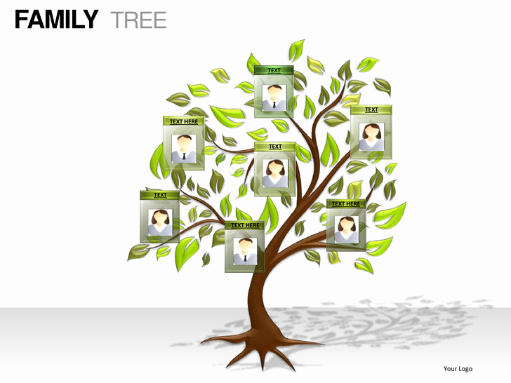 Powerpoint Family Tree Template Elegant Family Tree Powerpoint Presentation Templates