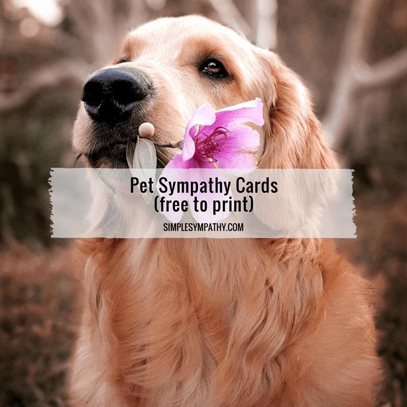 Print Out Sympathy Card Elegant Vente De Cialis Cost Viagra Simplesympathy Magasin De
