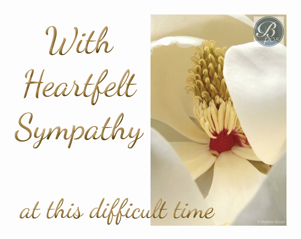 Print Out Sympathy Card Inspirational Heartfelt Sympathy Sympathy Card Printable Instant
