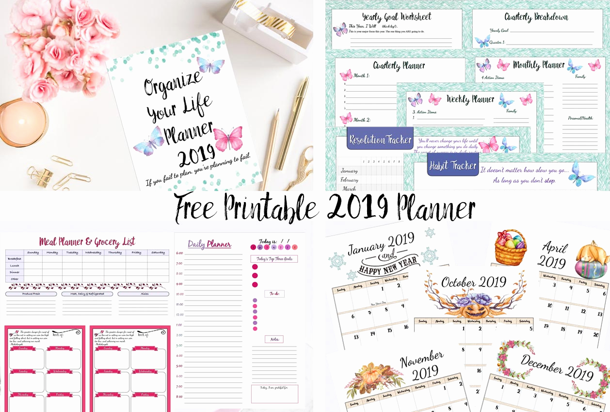 Printable Daily Planner 2019 Luxury Free Printable 2019 Planner Goals Planner 2019 Calendars