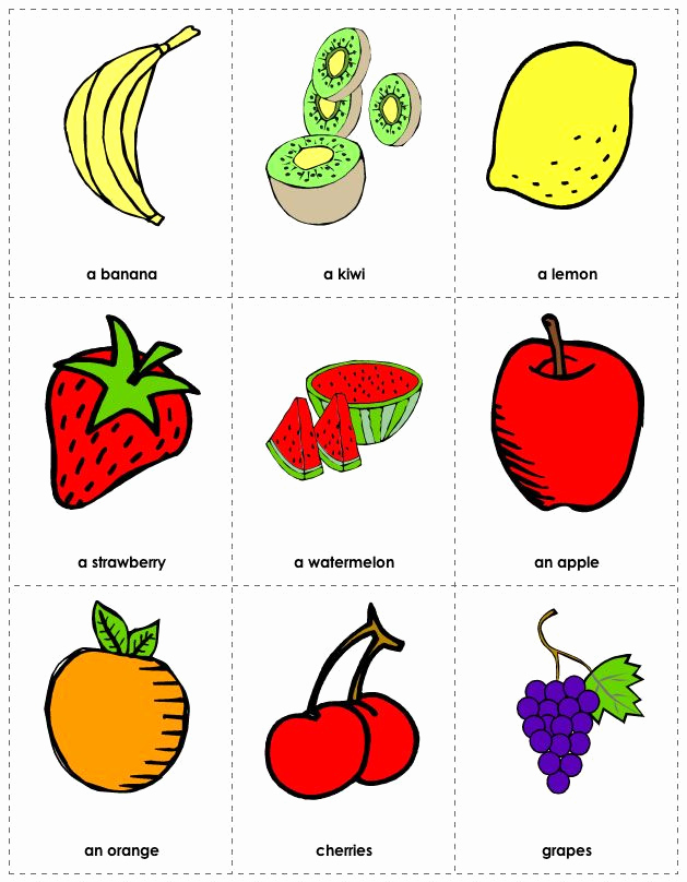 Printable Flash Card Maker Unique Free Printable Fruit Flashcards Flash Cards