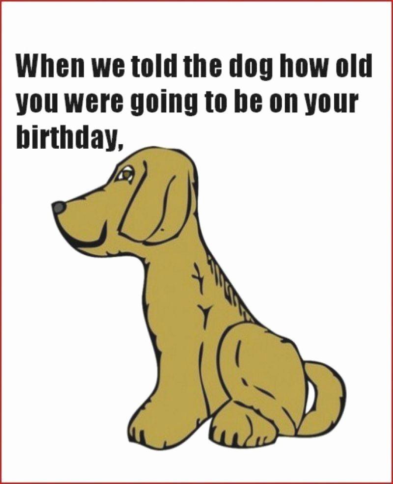 Printable Funny Birthday Card Fresh Free Printable Funny Birthday Cards for Adults Printable