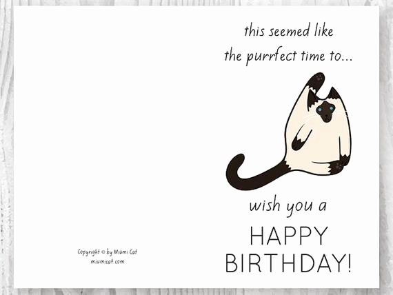 Printable Funny Birthday Cards Awesome Funny Birthday Cards Printables Funny Siamese Cat Birthday