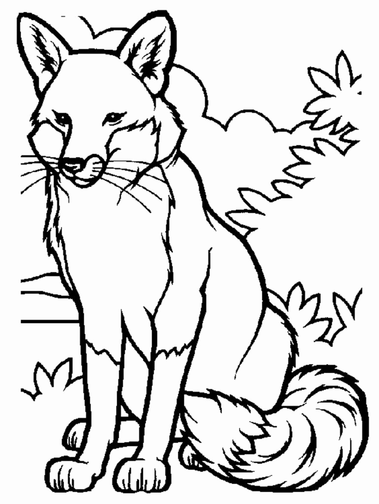 Printable Pictures Of Animals Elegant Free Printable Fox Coloring Pages for Kids