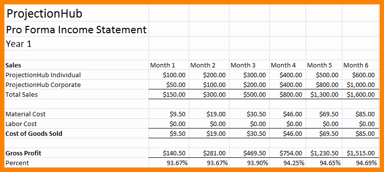 Pro forma Income Statement Template Awesome 7 Pro forma In E Statement Template