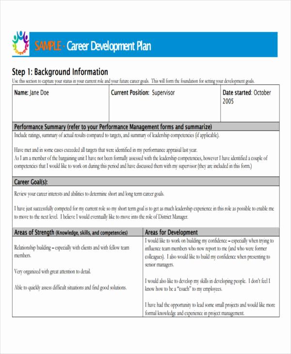 Professional Development Plan Sample Unique Career Development Plan