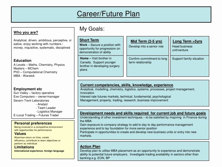 Professional Development Plan Template Luxury Developing A Plan Of Research