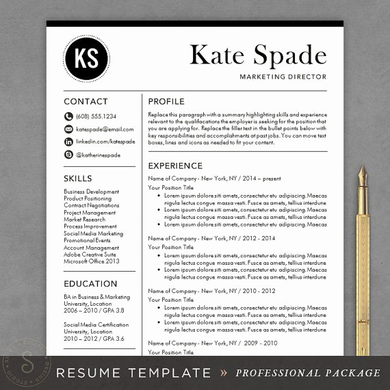 Professional Resume Template Free Awesome Professional Resume Template Cv Template Mac or Pc for