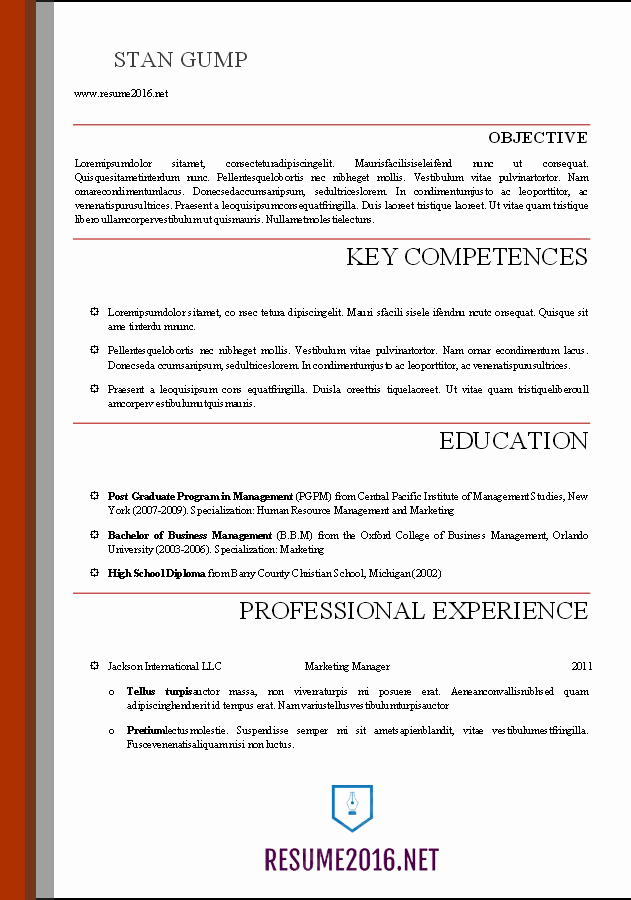 Professional Resume Template Word Awesome Word Resume Templates 2016
