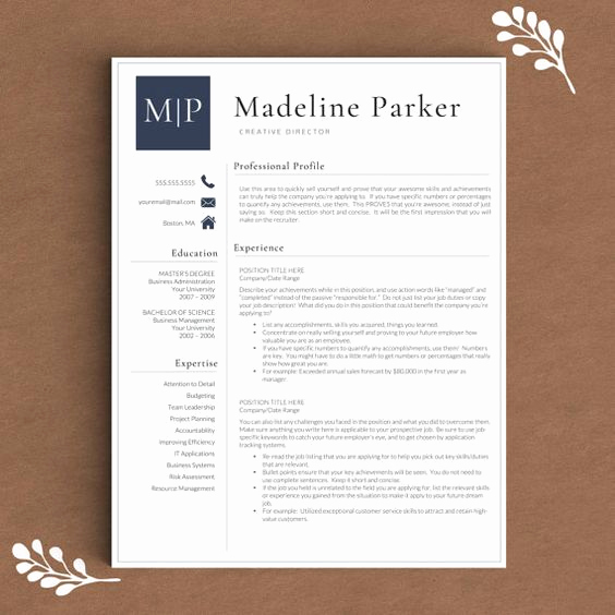 Professional Resume Template Word Fresh Professional Resume Template for Word & Pages