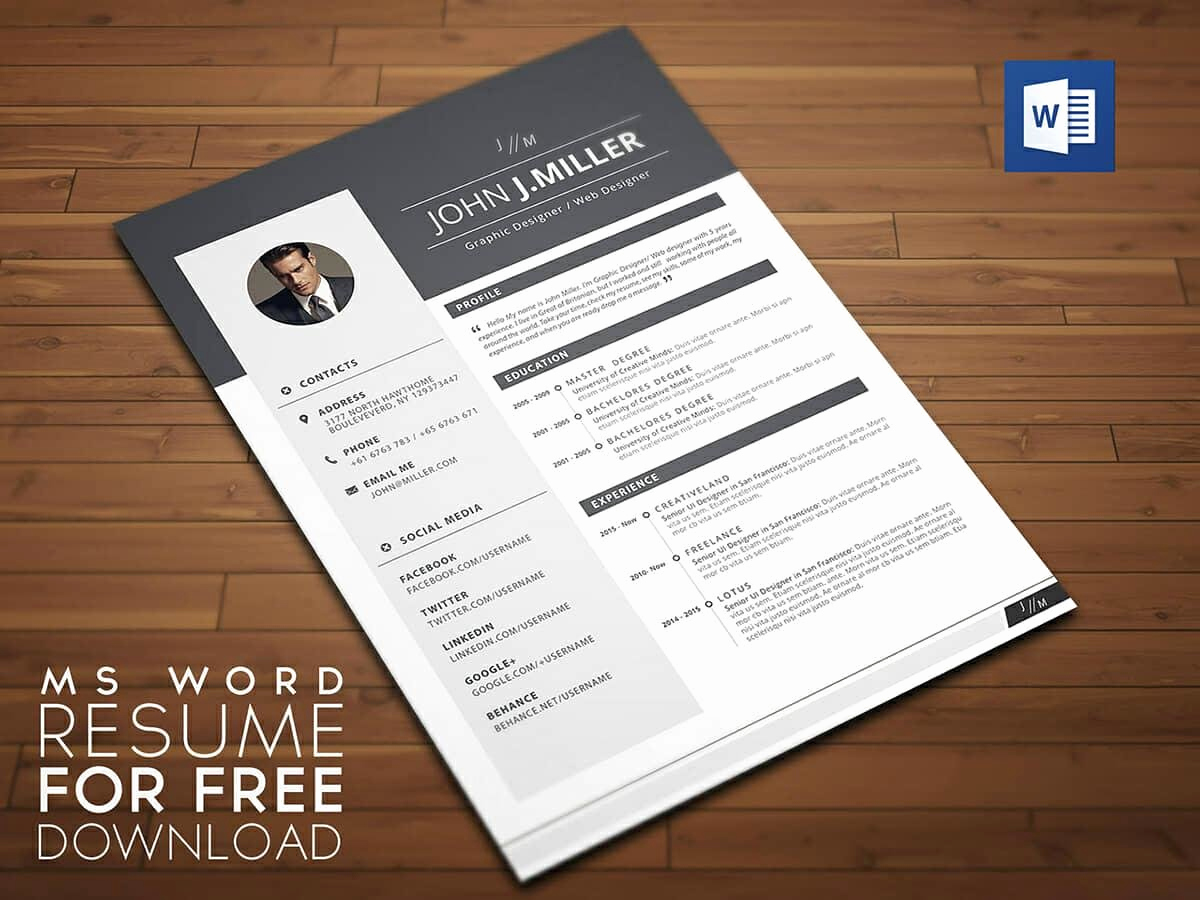 Professional Resume Template Word New Resume Templates for Word Free 15 Examples for Download