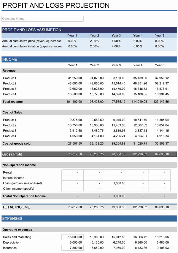 Profit and Loss Template Excel Lovely 5 Year Financial Plan