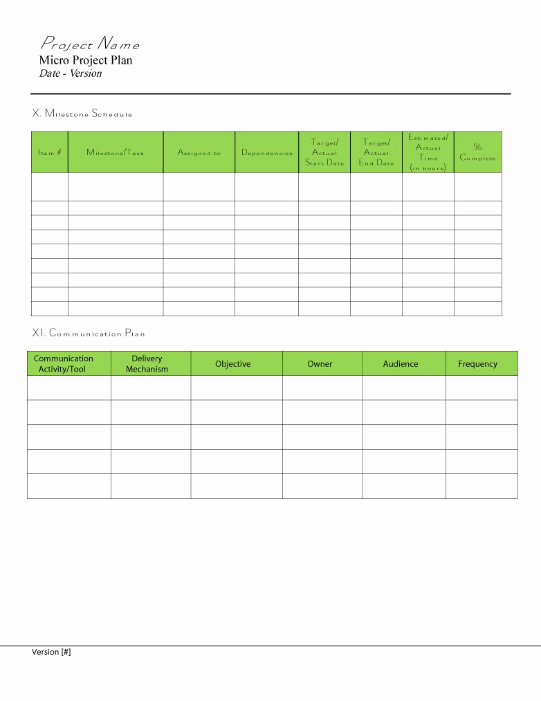 Project Plan Template Word Lovely 48 Professional Project Plan Templates [excel Word Pdf