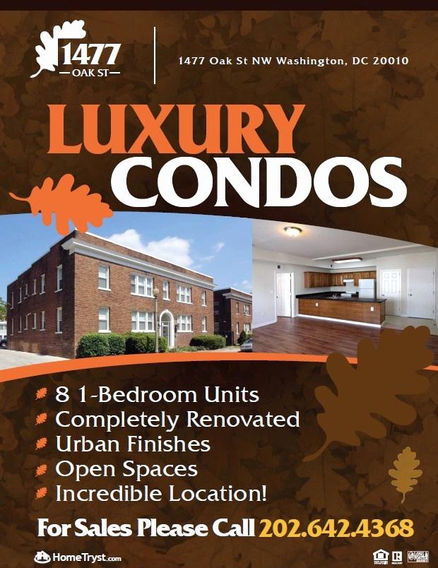 Real Estate Flyer Ideas Luxury 8 Best Real Estate Flyer Designs for Investors Images On