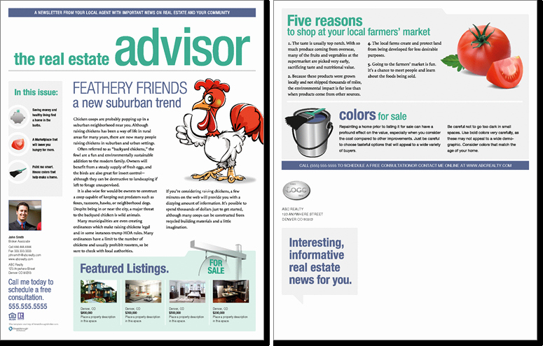 Real Estate Newsletter Templates Lovely Real Estate Advisor Newsletter Template issue 2