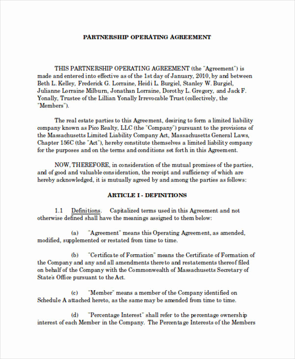 Real Estate Partnership Agreement Inspirational 60 Examples Of Partnership Agreements Word Apple Pages