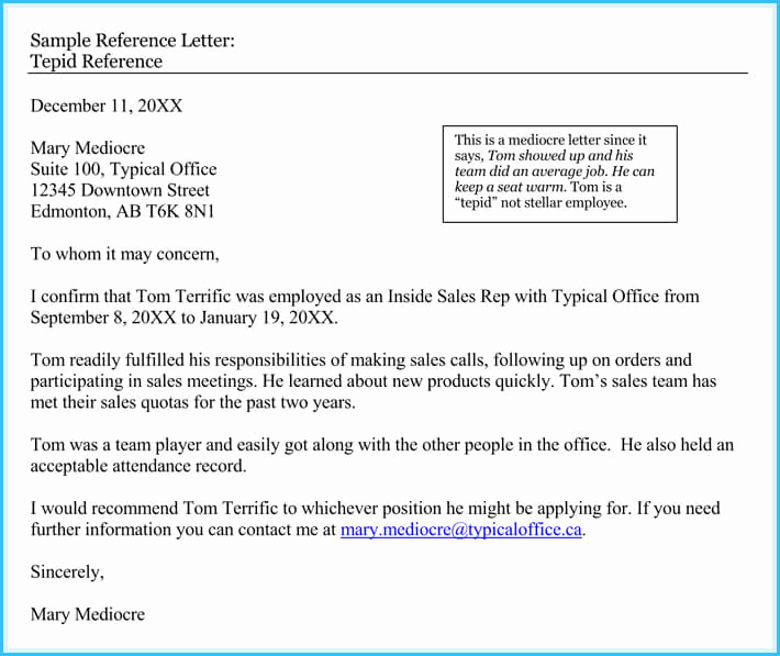 Reference Letters From Employer Luxury 20 Best Reference Letter Examples and Writing Tips