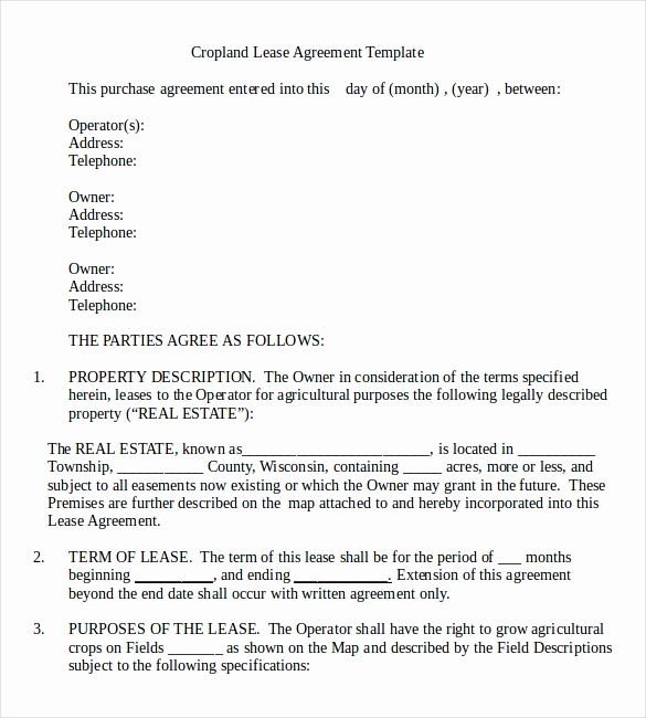 Rental Agreement Template Word Unique Rental Agreement Template – 21 Free Word Pdf Documents