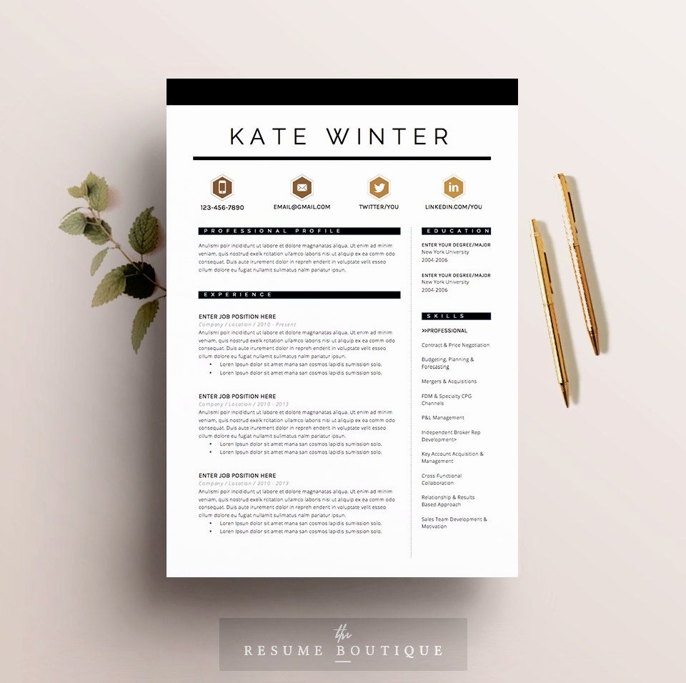 Resume Cover Letter Template Word Luxury Resume Template 4 Pages