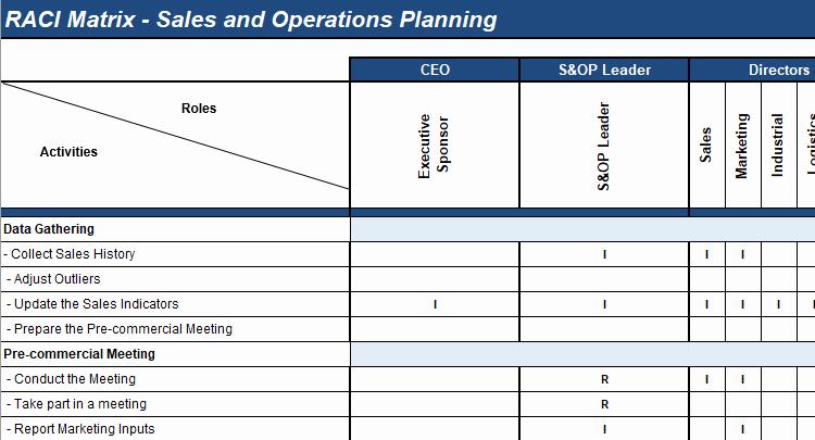 Roles and Responsibilities Template Best Of S&op Roles & Responsibilties Matrix