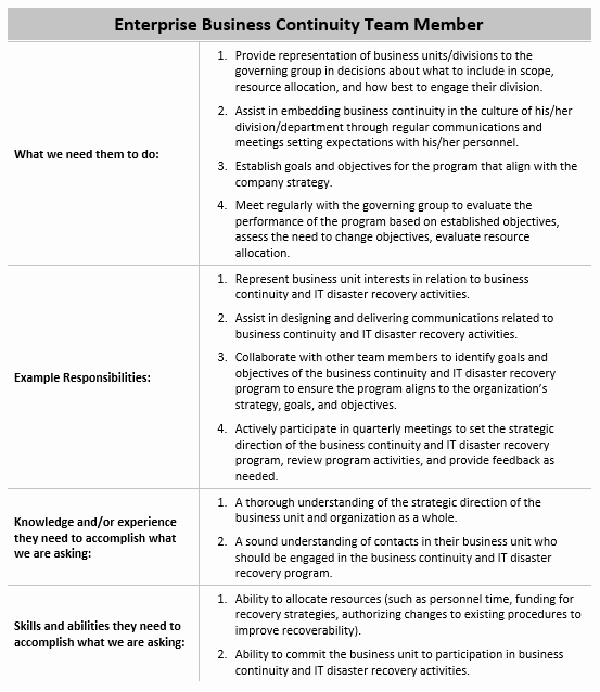 Roles and Responsibilities Template New Roles and Responsibilities Template