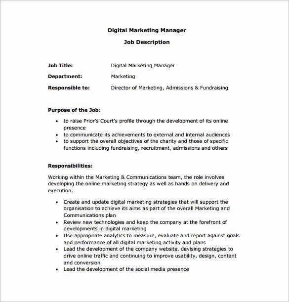 Sales and Marketing Job Description Unique Marketing Manager Job Description Template 9 Free Word