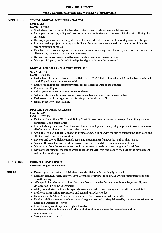 Sample Business Analyst Resume Elegant Digital Business Analyst Resume Samples