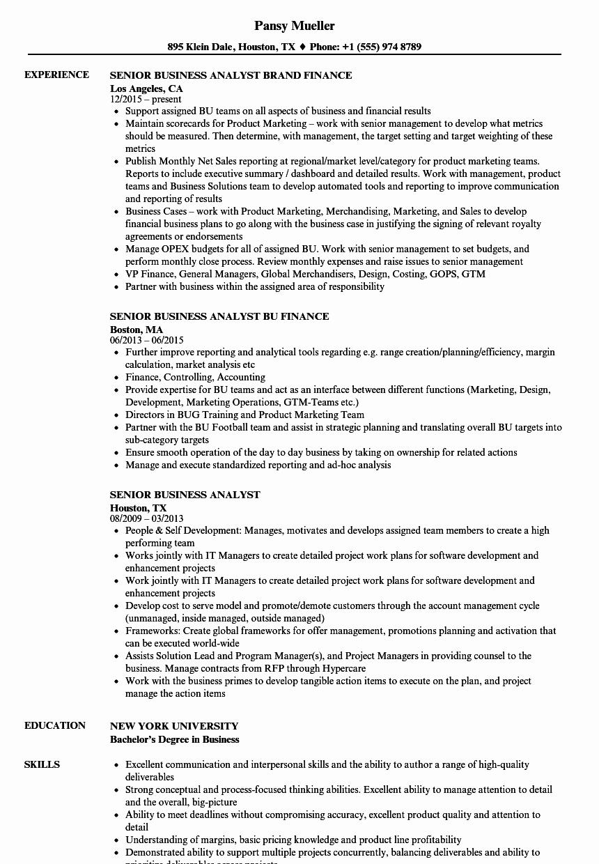 Sample Business Analyst Resume Unique Senior Business Analyst Resume Samples