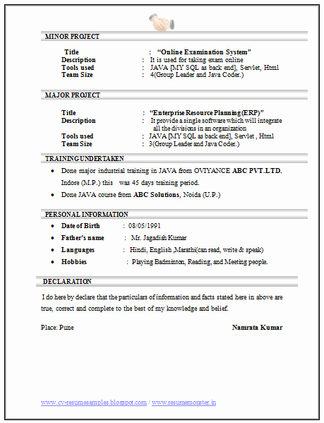 Sample Computer Science Resume Lovely Over Cv and Resume Samples with Free Download
