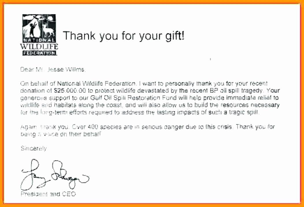 Sample Nonprofit Gift Acknowledgement Letter Beautiful Sample Nonprofit Gift In Kind Acknowledgement Letter