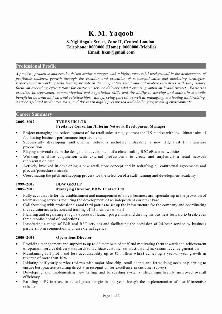 Sample Of Curriculum Vita Unique Professional Cv Sample