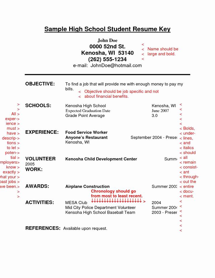 Sample Resume College Student Best Of Best 25 High School Resume Ideas On Pinterest