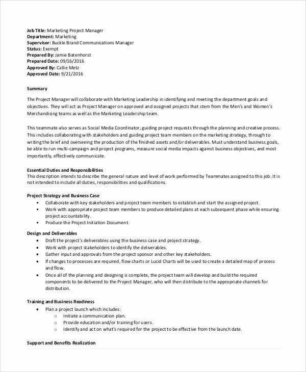 Senior Projects Manager Job Description Elegant 9 Project Manager Job Description Samples