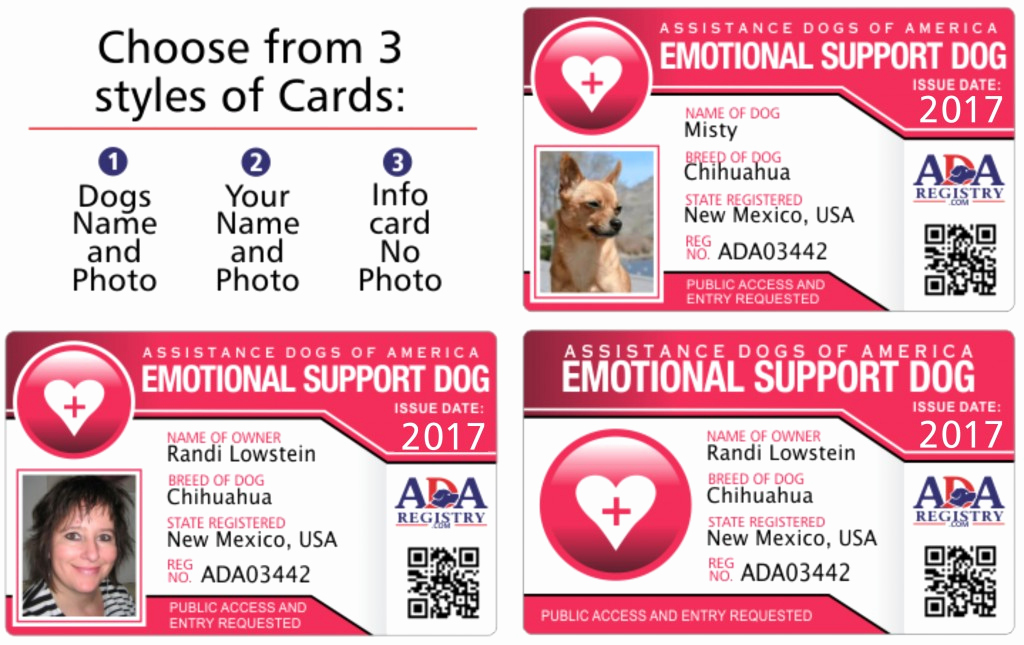 Service Dog Certificate Template Luxury Service Dog Id Card Gallery Service Dog Registry