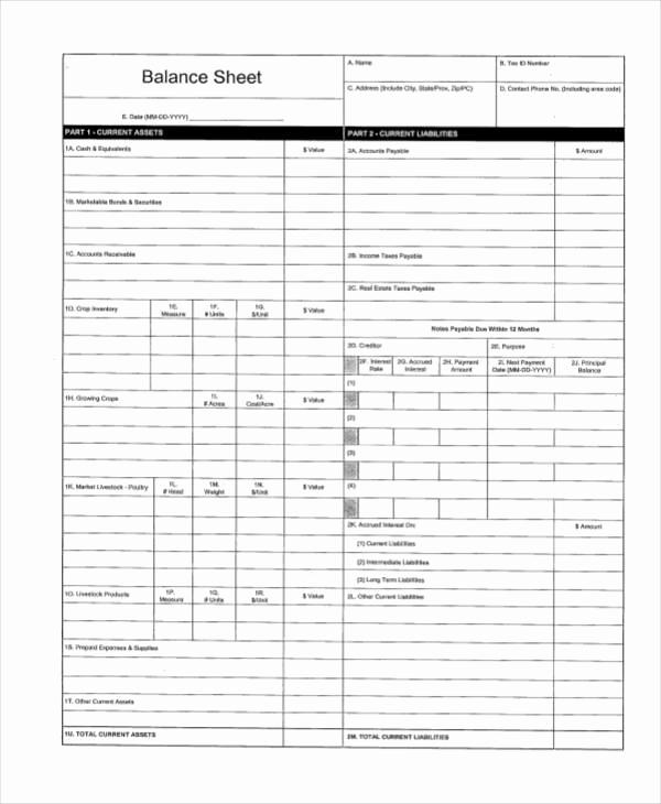 Simple Balance Sheet Template Elegant 39 Sheet Samples & Templates