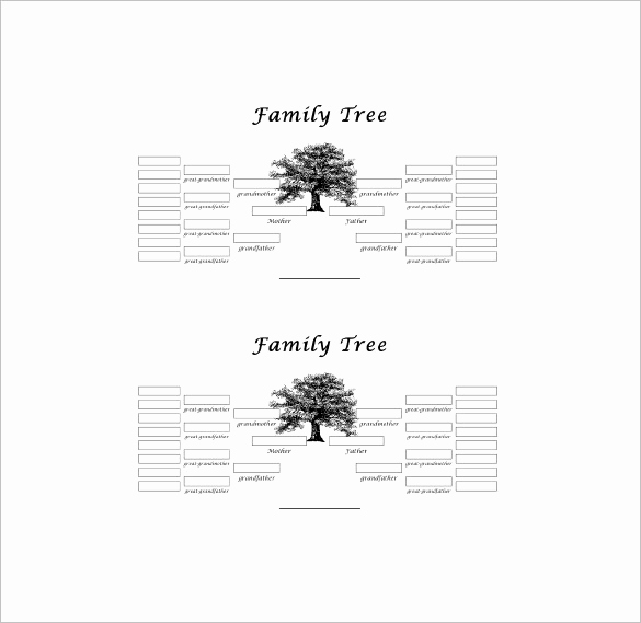 Simple Family Tree Template Elegant Five Generation Family Tree Template – 11 Free Word