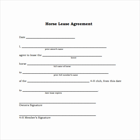 Simple Lease Agreement Pdf Beautiful 10 Horse Lease Agreement Templates