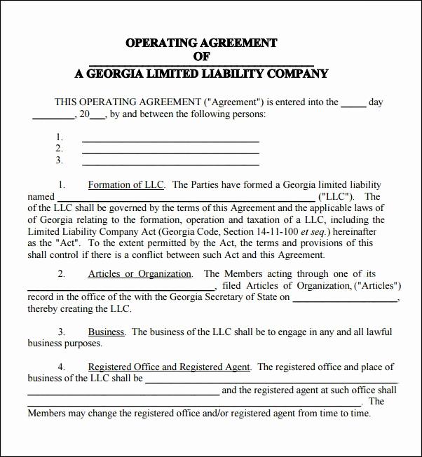 Simple Llc Operating Agreement Beautiful Llc Operating Agreement Georgia