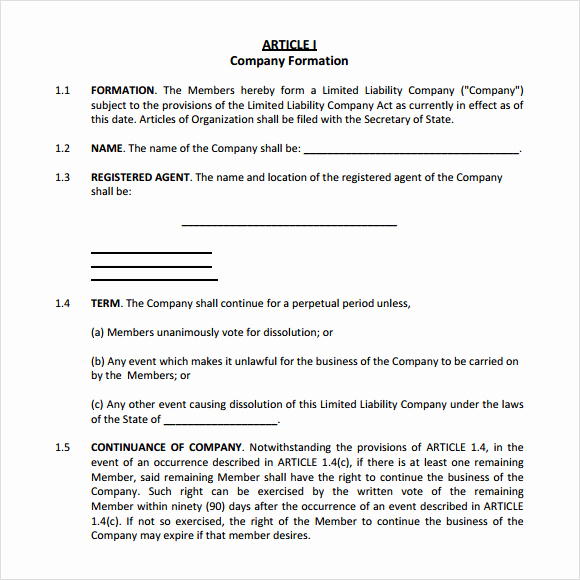 Simple Llc Operating Agreement Beautiful S Corp Operating Agreement