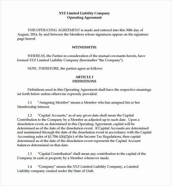 Simple Llc Operating Agreement Best Of Sample Business Operating Agreement 7 Free Documents