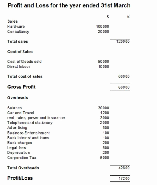 Simple Profit and Loss Statements Luxury Profit and Loss Statement P&l Example and Template