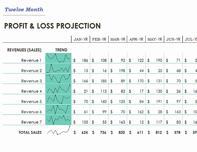 Simple Profit and Loss Statements Unique Profit and Loss Fice
