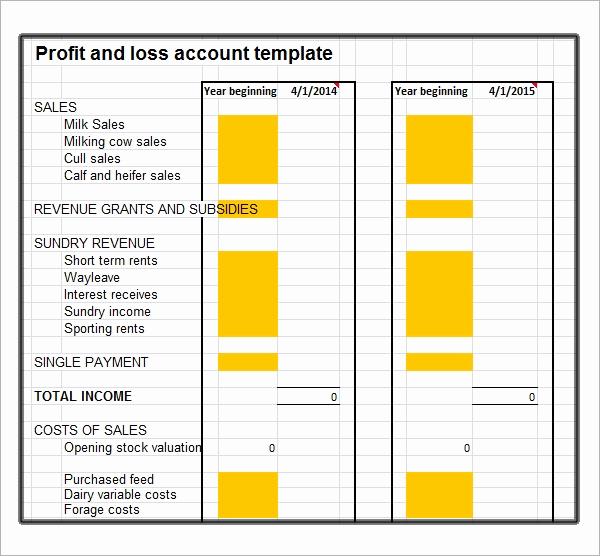 Simple Profit and Loss Template Elegant 20 Sample Profit and Loss Templates Docs Pdf Apple