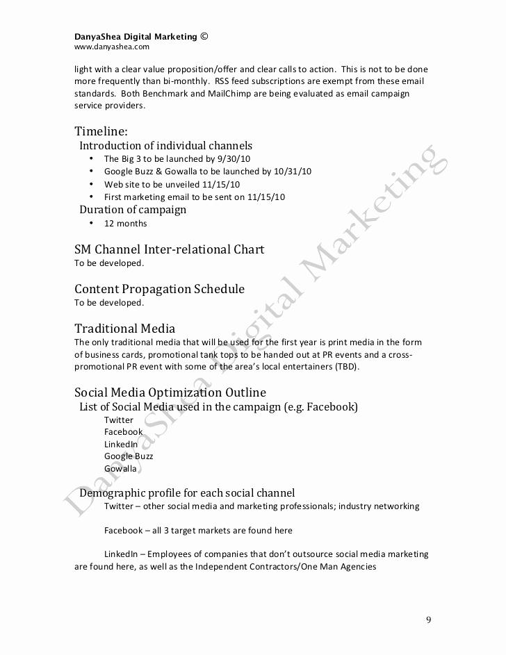 Social Media Marketing Proposal Lovely social Media Marketing Plan Sample