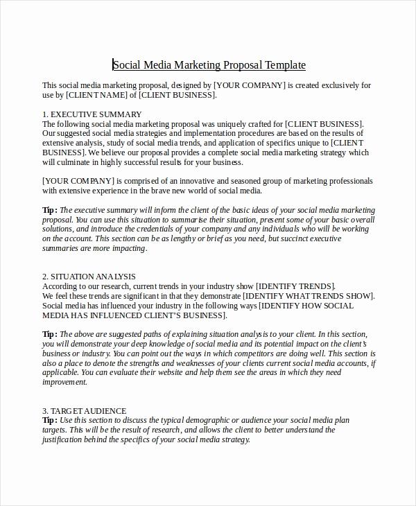 Social Media Marketing Proposal New 12 social Media Marketing Proposal Examples & Samples