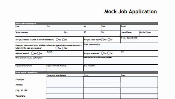 Standard Job Application form Fresh 9 Sample Standard Job Application form Free Sample