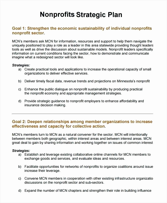 Strategic Plan Template for Nonprofits Awesome Nonprofit Sustainability Plan Template