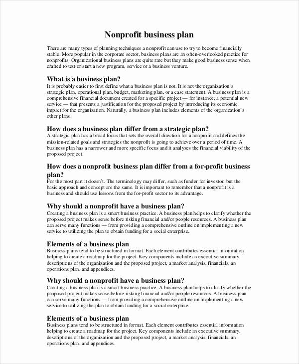 Strategic Plan Template for Nonprofits New Non Profit Business Plan 13 Pdf Word Documents