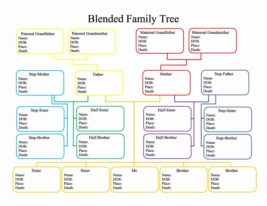 Template for Family Tree Fresh 50 Free Family Tree Templates Word Excel Pdf